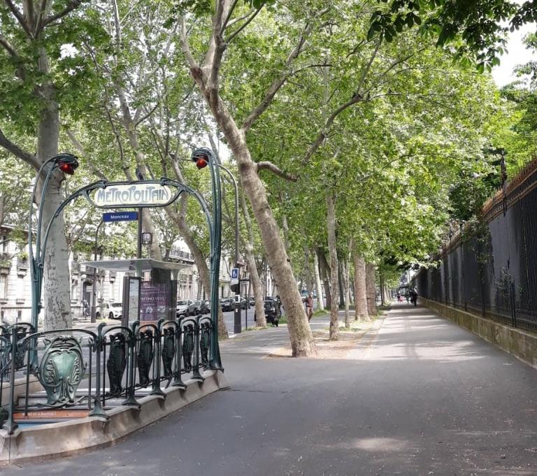 street Paris.jpg